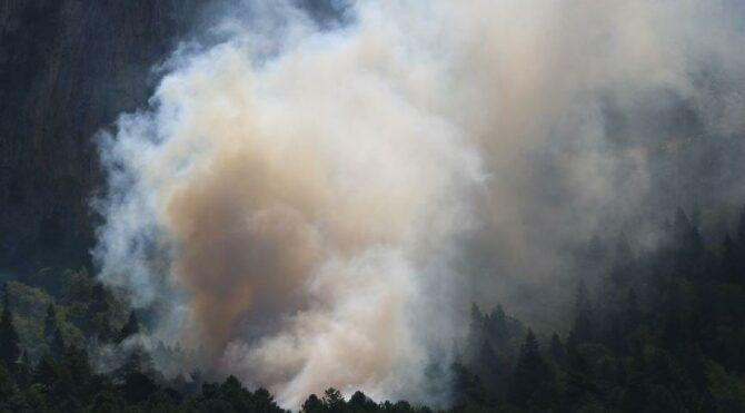Adana'da orman yangını büyüdü, camiden destek anonsları yapıldı