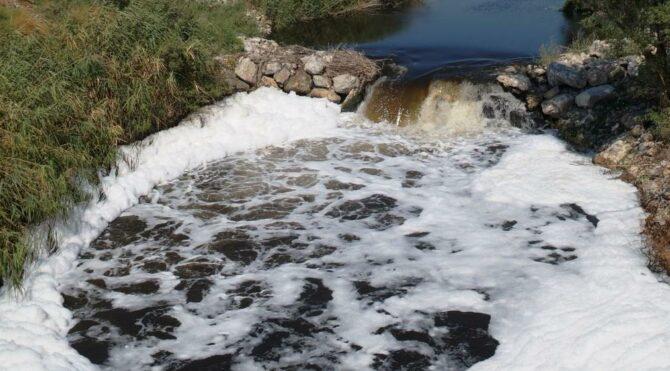 Tüm canlıları öldüren kirli su pamuk sulamasında kullanılıyor